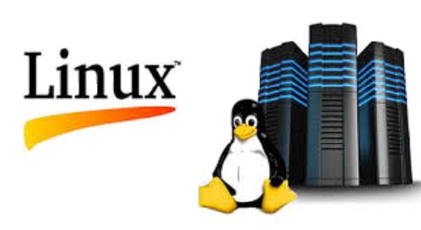 6 razones por las que a las empresas les puede convenir un hosting con sistema operativo Linux